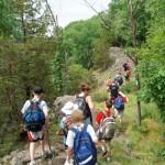 TrailMark Outdoor Adventure Series